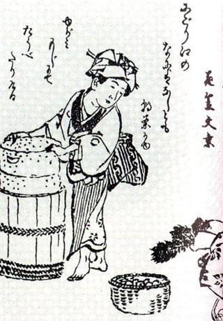 303 tsukemono2 - Nukazuke
